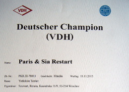 Deutsche Champion